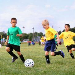 Hướng dẫn lựa chọn tài năng trẻ để đào tạo